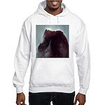 Horsehead Nebula Hooded Sweatshirt