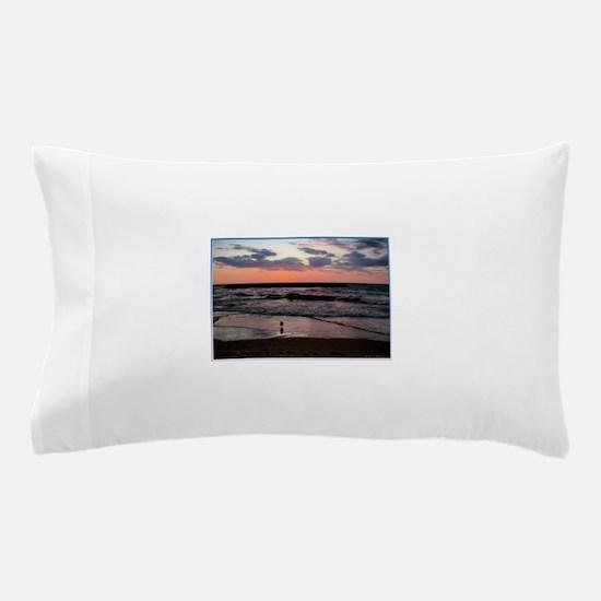 Sunset, seagull, photo! Pillow Case