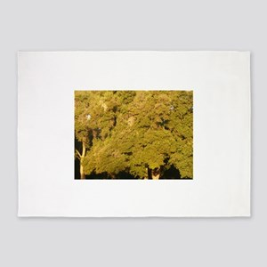 golden oak trees at Thousand Oaks p 5'x7'Area Rug