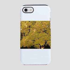 golden oak trees at Thousand O iPhone 7 Tough Case