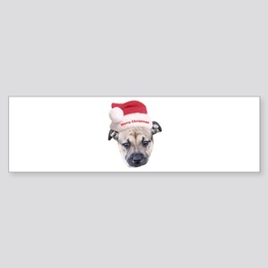 Staffordshire Bull Terrier Puppy Bumper Sticker