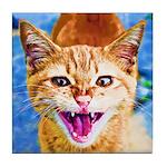 Krazy Kitten  Tile Coaster