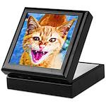 Krazy Kitten Keepsake Box
