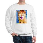 Krazy Kitten  Sweatshirt