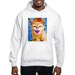 Krazy Kitten Hooded Sweatshirt