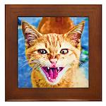 Krazy Kitten  Framed Tile