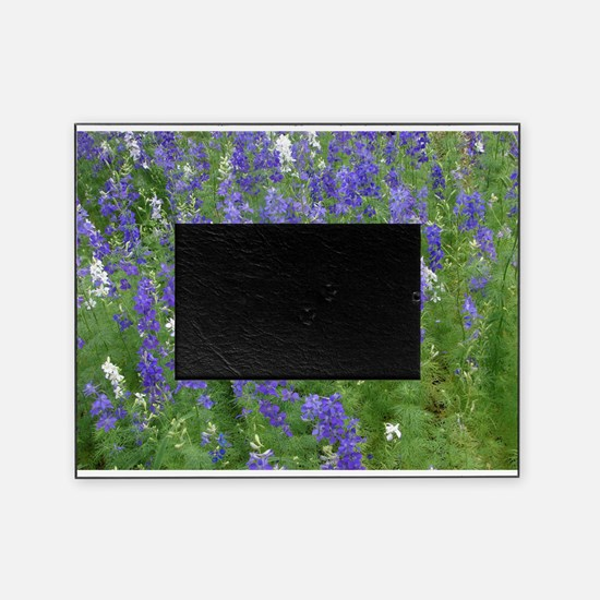 Texas Bluebonnets in Bloom Picture Frame