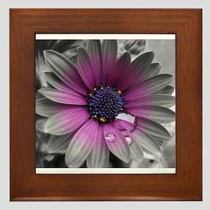 Wonderful Flower with Waterdrops Framed Tile