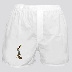 Squirrel Drinking Beer Boxer Shorts