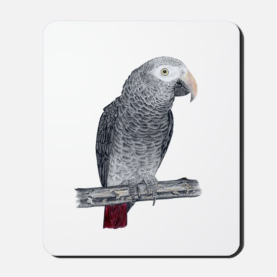 Profile of a Timneh Mousepad