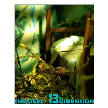 13th Dimensions Small Poster