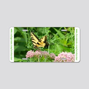 Tiger Swallowtail License Plate