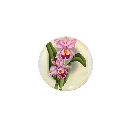 Orchid Antique Botanical Prin Mini Button