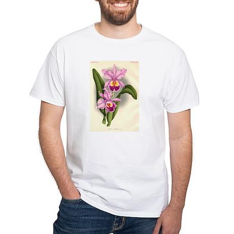 Orchid Antique Botanical Prin White T-Shirt