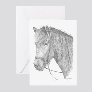 Kostur Greeting Cards (Pk of 10)
