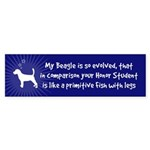 My Beagle Is So Evolved... Bumper Sticker