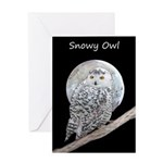 Snowy Owl and Moon Greeting Card