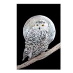 Snowy Owl and Moon Postcards (Package of 8)