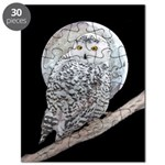 Snowy Owl and Moon Puzzle