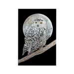 Snowy Owl and Moon Rectangle Magnet