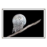Snowy Owl and Moon Banner