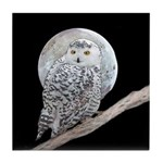 Snowy Owl and Moon Tile Coaster