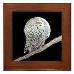 Snowy Owl and Moon Framed Tile