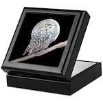 Snowy Owl and Moon Keepsake Box