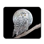 Snowy Owl and Moon Mousepad