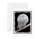 Snowy Owl and Moon Greeting Cards (Pk of 20)
