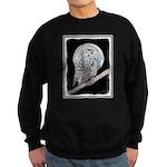 Snowy Owl and Moon Sweatshirt (dark)
