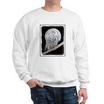 Snowy Owl and Moon Sweatshirt