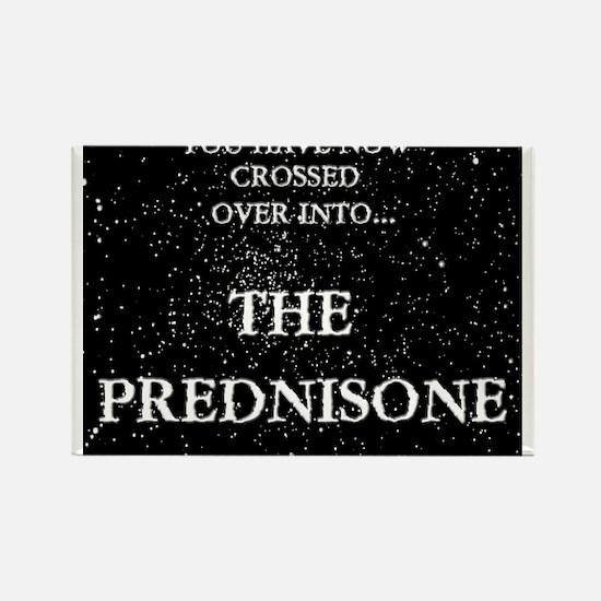 The Prednisone Rectangle Magnet