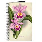 Orchid Antique Botanical Prin Journal