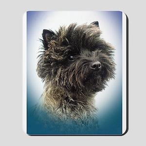 Cairn Terrier Top Champion Girl Mousepad