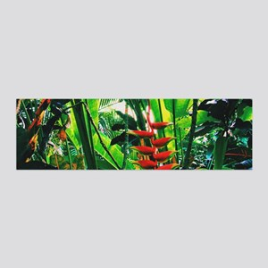 Tropical 2 Wall Decal Sticker