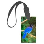 Steller's Jay Large Luggage Tag