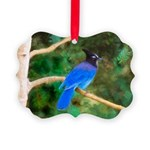 Steller's Jay Picture Ornament