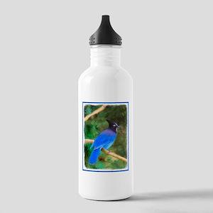 Steller's Jay Stainless Water Bottle 1.0L