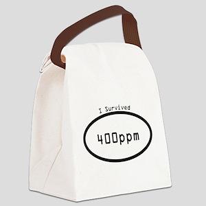 400 Parts Per Million Co2 Canvas Lunch Bag
