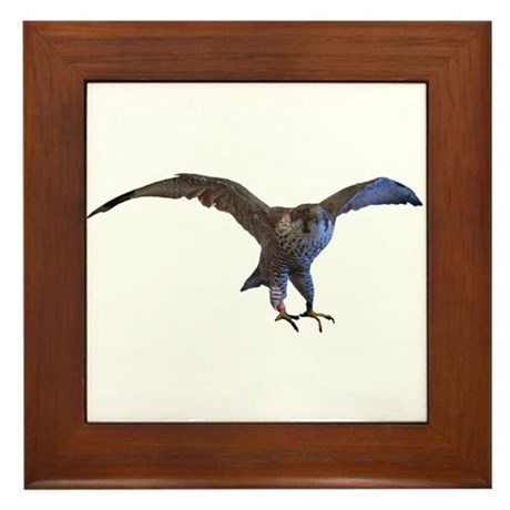 falcon Framed Tile