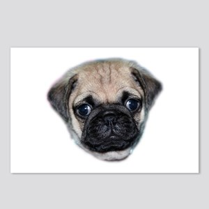 Pug Puppy Postcards (Package of 8)