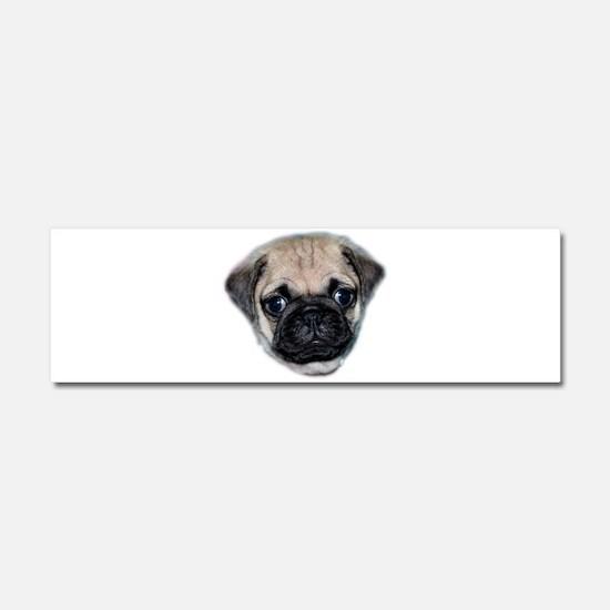Pug Puppy Car Magnet 10 x 3