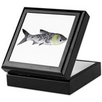 Bighead Carp (Asian Carp) fish Keepsake Box