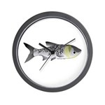Bighead Carp (Asian Carp) fish Wall Clock