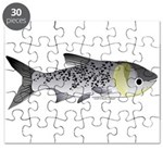Bighead Carp (Asian Carp) fish Puzzle