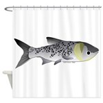 Bighead Carp (Asian Carp) fish Shower Curtain