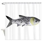 Bighead Carp (Asian Carp) fish Shower Curtain