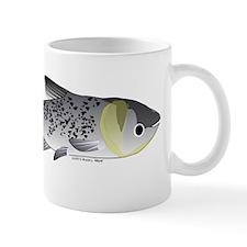 Bighead Carp (Asian Carp) fish Mug