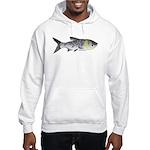 Bighead Carp (Asian Carp) fish Hoodie